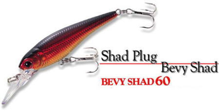 LUCKY CRAFT / BEVY SHAD 60 SP