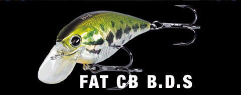 LUCKY CRAFT Fat CB BDS4 Big Daddy Strike 3//4oz Lure RARE COLOR TAKAHIRO LURE